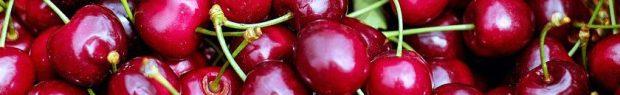 cropped-cherries-1453333_960_720.jpg