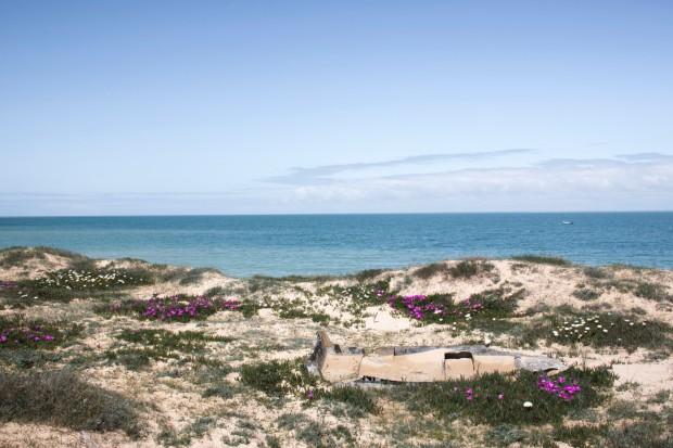 plage-de-la-conche-de-la-baleine-1024x683@2x